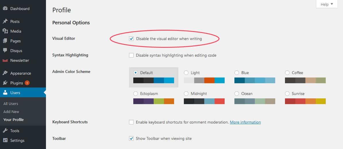 Disabling visual view in WordPress editor